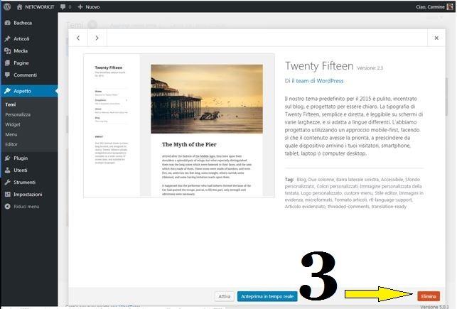 Come eliminare un tema in WordPress